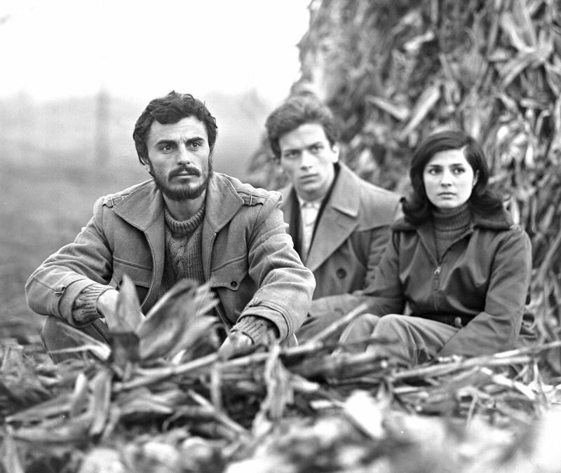 Klasyka kina węgierskiego dostępna bezpłatnie